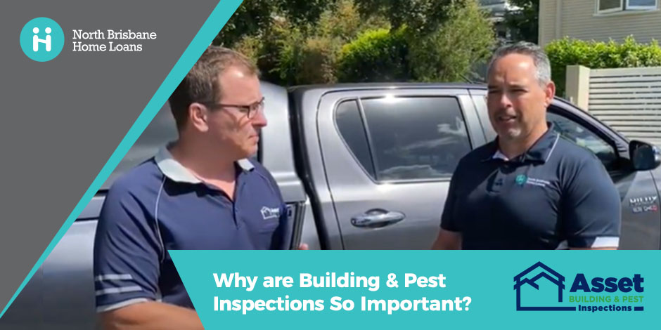 Why are Building and Pest Inspections So Important?